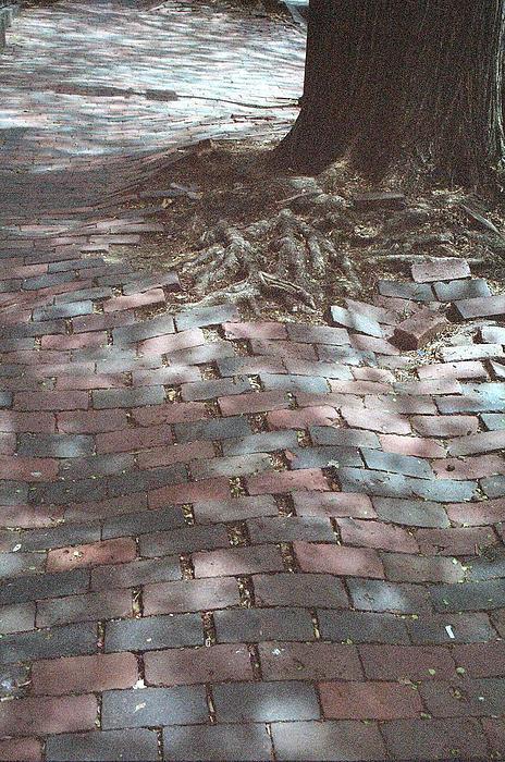 Beacon Hill Brick Print by Jill Tuinier