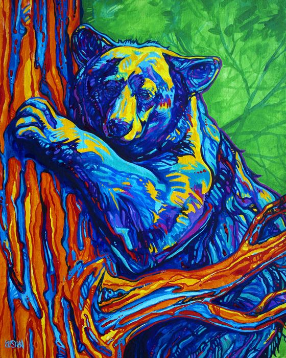 Derrick Higgins - Bear Hug