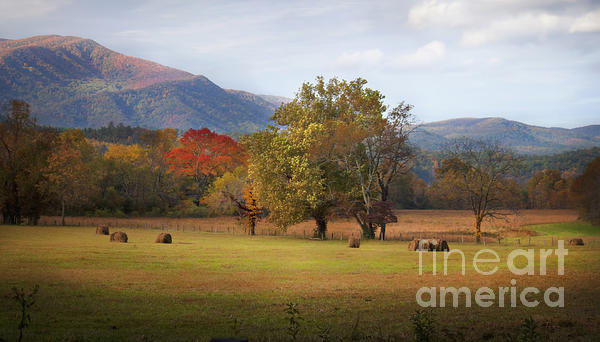 Lena Auxier - Beautiful Cades Cove
