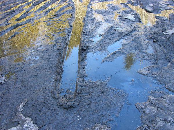 Beautiful Mud Season Print by Sherman Perry