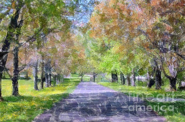 Beautiful Pathway Print by Kathleen Struckle