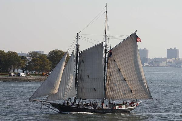 John Telfer - Beautiful Sailboat In Manhattan Harbor