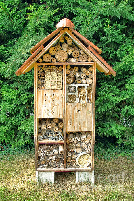 Bee House By Olivier Le Queinec