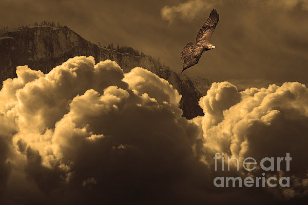 Before Memory . I Have Soared With The Hawk Print by Wingsdomain Art and Photography