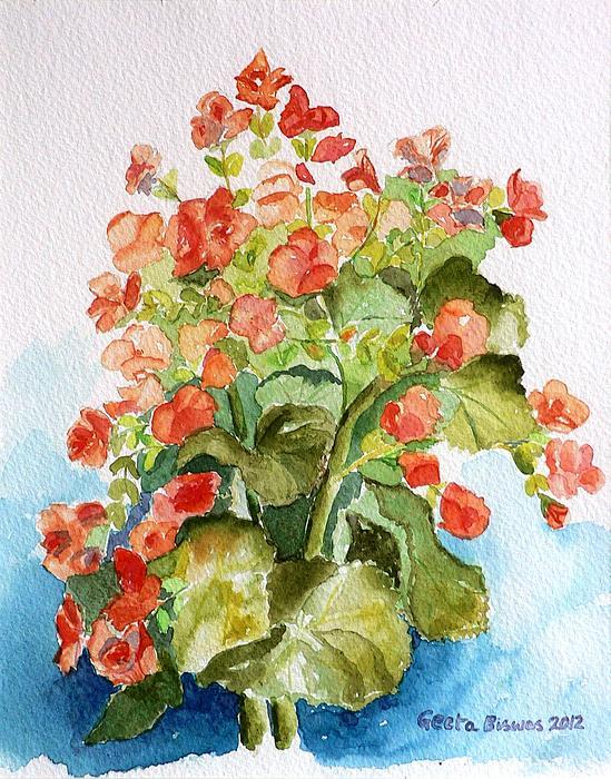 Geeta Biswas - Begonias Still life