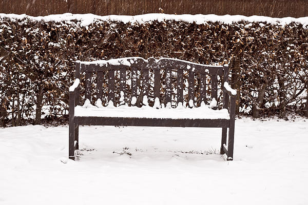 Bench In The Snow Print by Tom Gowanlock