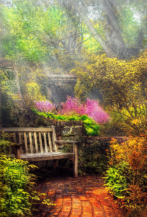 Bench - Tranquility II Print by Mike Savad