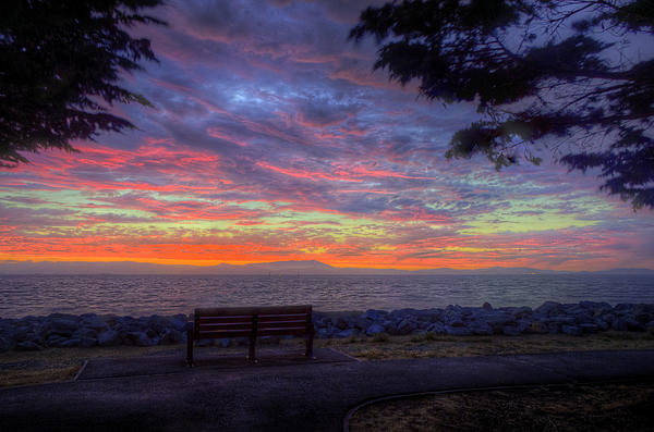 Kevin  Ellis - Bench with a View