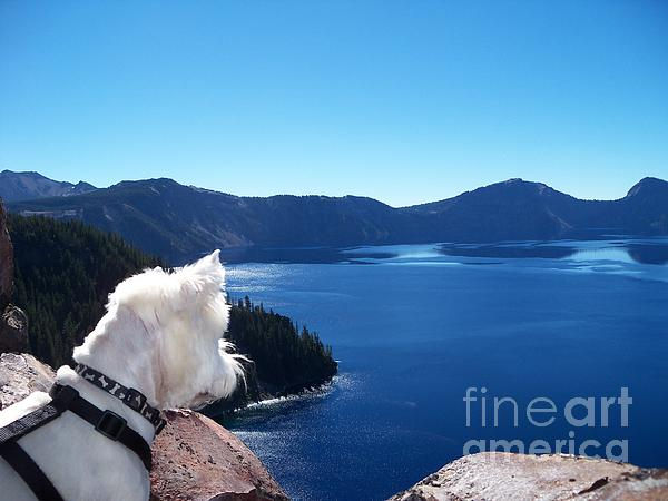 J J - Beni on a Journey Around Crater Lake