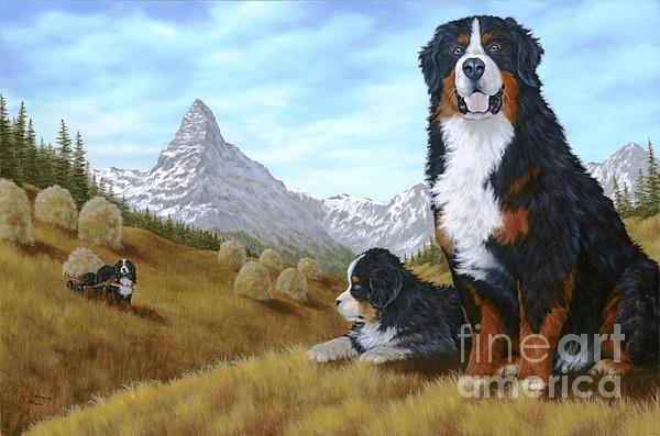 Bernese Mountain Dog Print by Rick Bainbridge