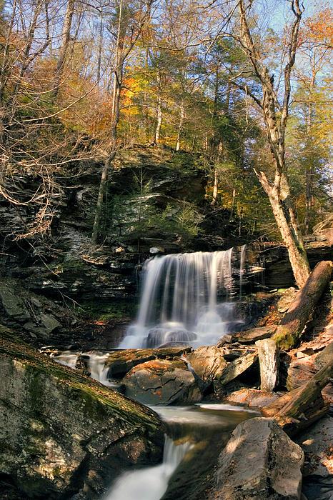 Big Autumn View At B. Reynolds Falls Print by Gene Walls
