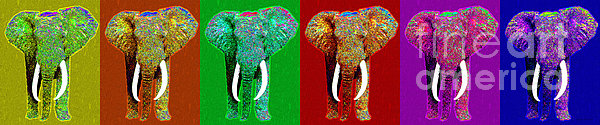 Big Elephant Six 20130201 Print by Wingsdomain Art and Photography
