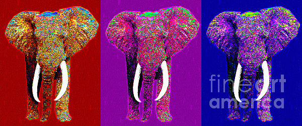Big Elephant Three 20130201v2 Print by Wingsdomain Art and Photography