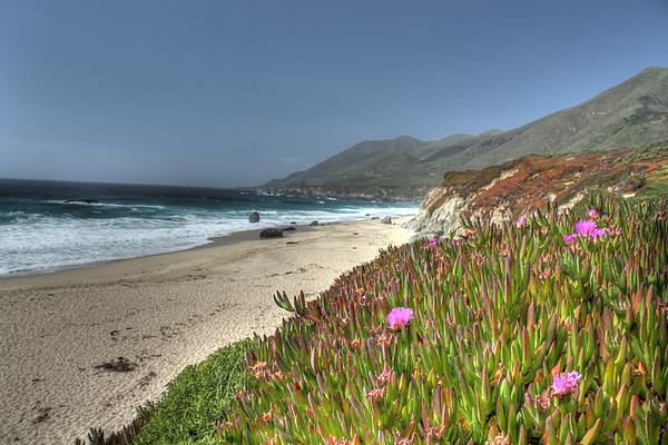 Big Sur Beach Print by Jane Linders