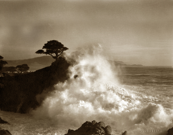 California Views Mr Pat Hathaway Archives - Big Wave hitting the Lone Cypress Tree Pebble Beach California 1916