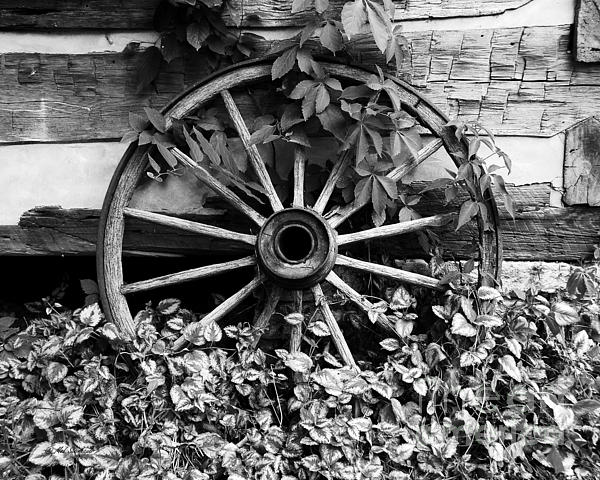Big Wheel Bw Print by Mel Steinhauer