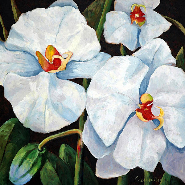 Big White Orchids - Floral Art By Betty Cummings Print by Betty Cummings