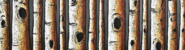 Birches A Touch Of Red Print by Lori McPhee