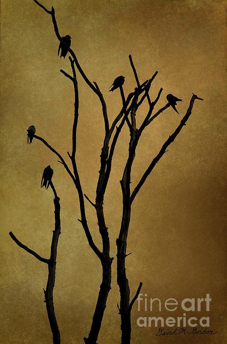 Birds In Tree Print by David Gordon