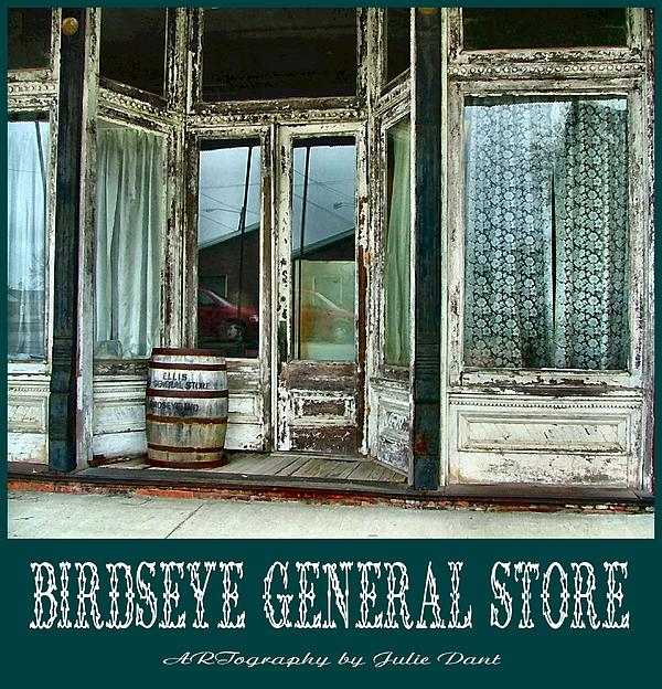 Birdseye General Store Print by Julie Dant