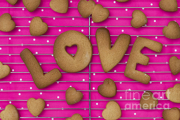 Biscuit Love Print by Tim Gainey