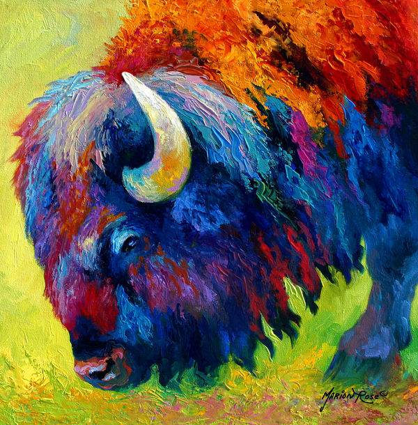 Bison Portrait II Print by Marion Rose