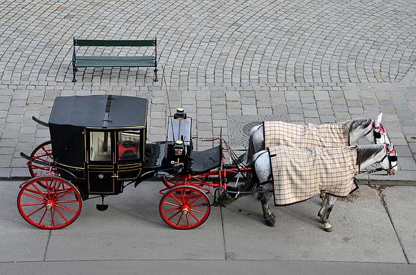 Black And Red Horse Carriage - Vienna Austria  Print by Imran Ahmed