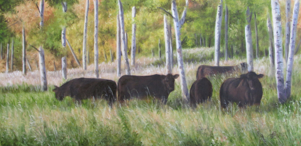 Black Angus Grazing Print by Tammy  Taylor