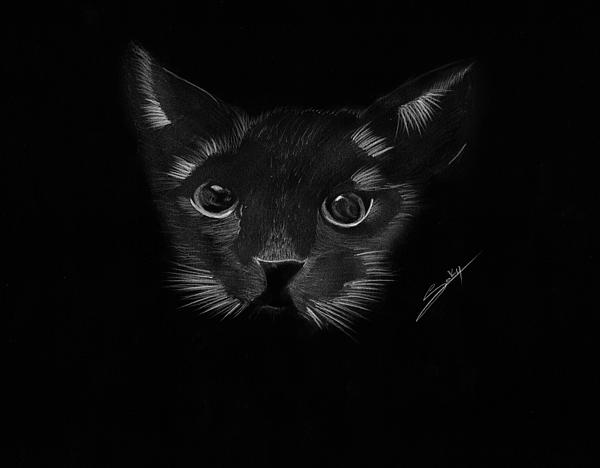 Black Cat Print by Saki Art