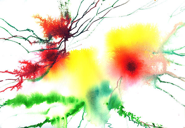 Blooms 3 Print by Anil Nene