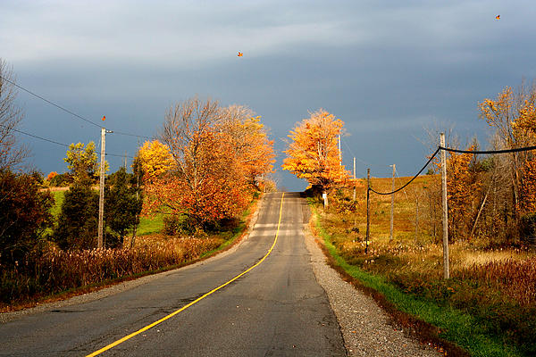 Christine Montague - Blowing Orange Leaves Country Road