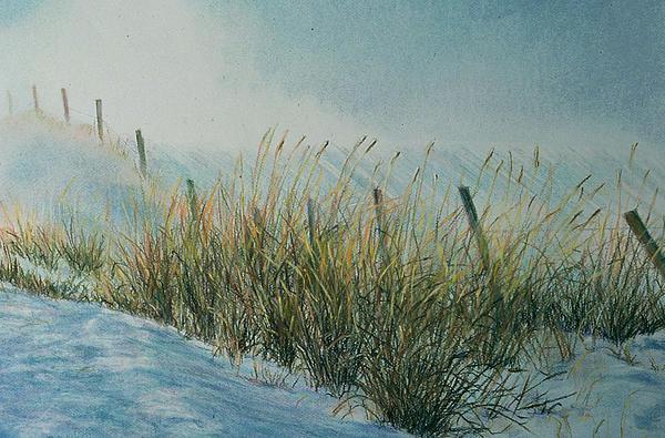 Blowing Snow Print by Nick Payne