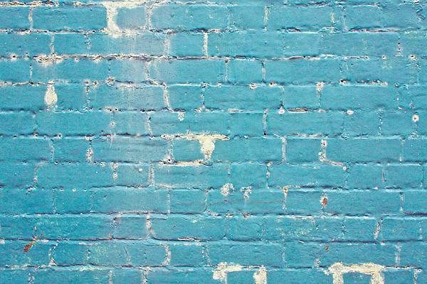 Blue Brick Wall Print by Tom Gowanlock
