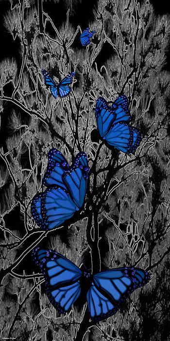 Blue Butterflies Print by Barbara St Jean