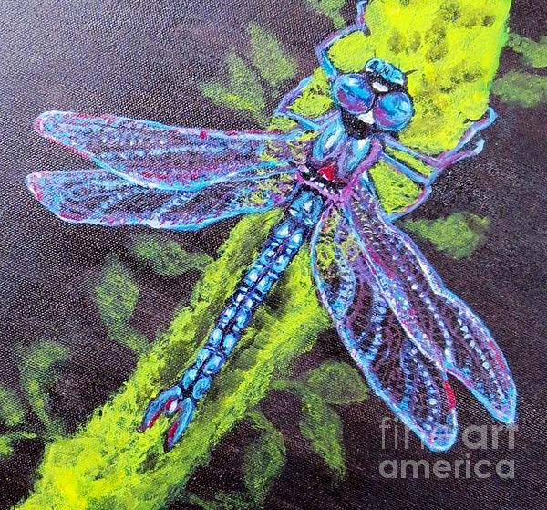 Kimberlee  Baxter - Blue Dragonfly on Upward Wings of Flight