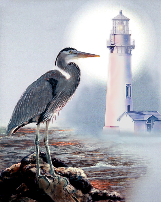 Blue Heron In The Circle Of Light Print by Gina Femrite