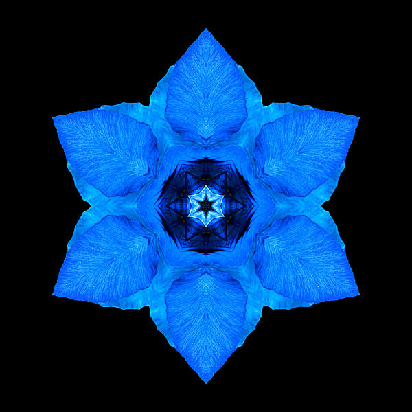 Blue Pansy II Flower Mandala Print by David J Bookbinder