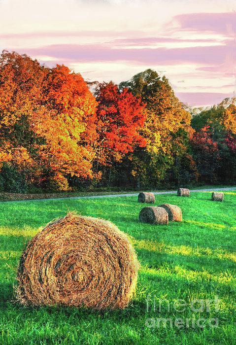 Blue Ridge - Fall Colors Autumn Colorful Trees And Hay Bales II Print by Dan Carmichael