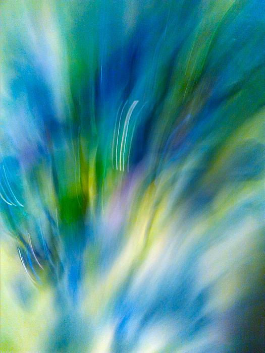 Blue Series C Print by Sylvia Herrington