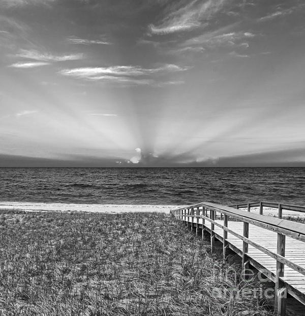 Boardwalk To The Sea Print by Michelle Wiarda