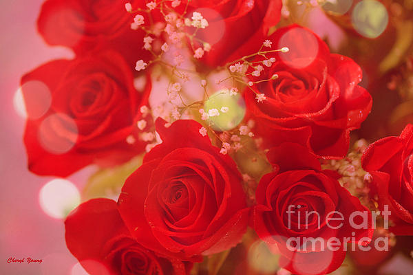 Bokeh Roses Print by Cheryl Young