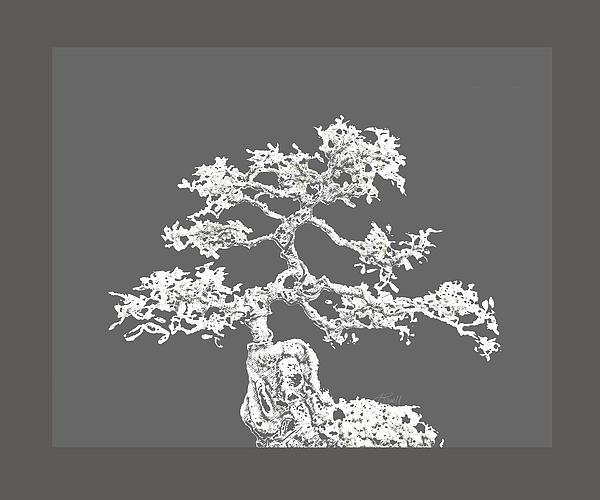 Bonsai II Print by Ann Powell