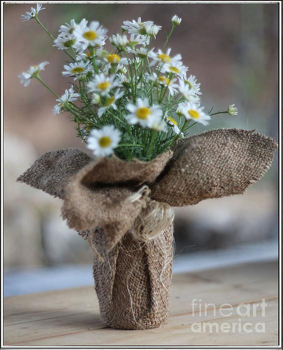 Bouquet Of Chamomile  Print by Petko Pemaro