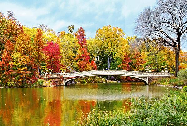Regina Geoghan - Bow Bridge Autumn In Central Park