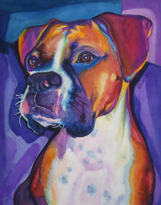 Boxer Dog Portrait Print by Robyn Saunders