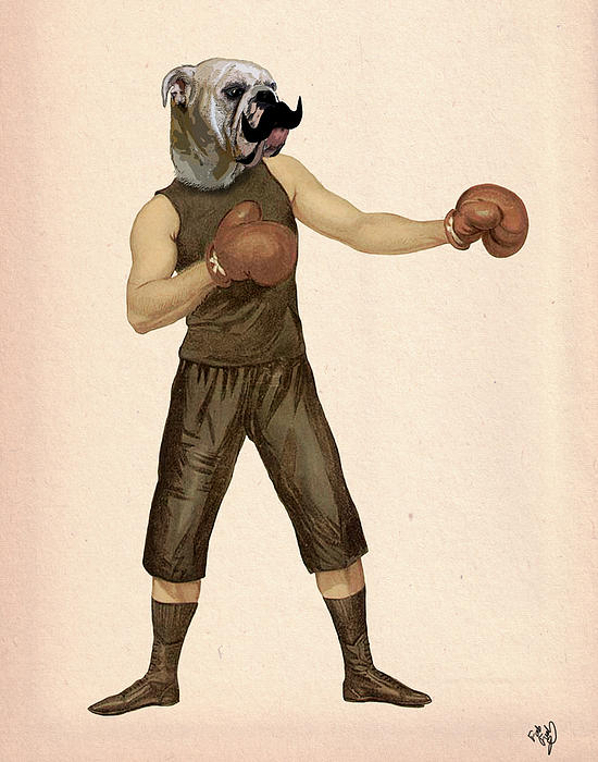 Boxing Bulldog Print by Kelly McLaughlan
