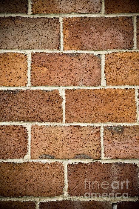 Brick Wall Print by Frank Tschakert