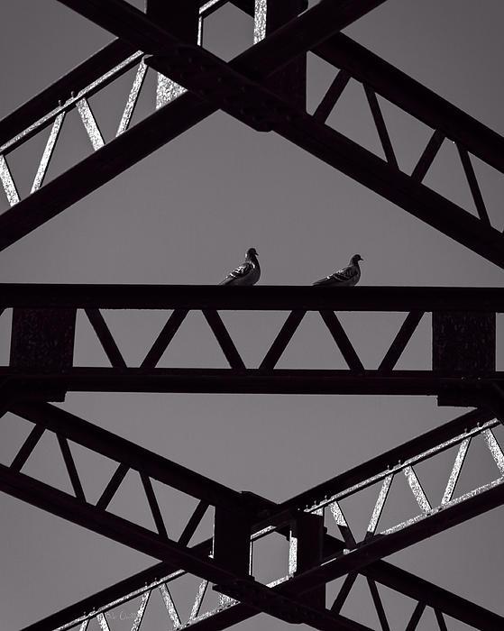 Bridge Abstract Print by Bob Orsillo