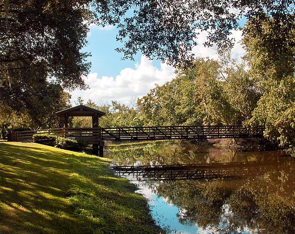 Bridge At Sawgrass Park Print by Ginny Schmidt