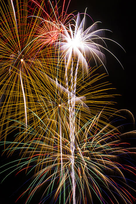 Bright Bursts Of Fireworks Print by Garry Gay